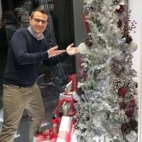 Valigeria-Ambrosetti-con-i-nuovi-alberi-di-Natale